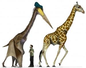 Mark Witton's big pterosaur