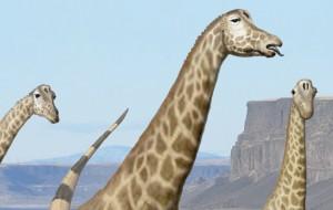 Sauropod lips